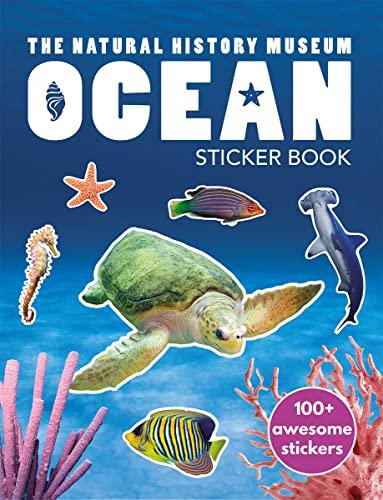 9780565092573: Ocean Sticker Book