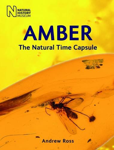 9780565092580: Amber: The Natural Time Capsule