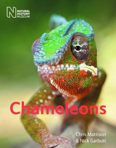 9780565092900: Chameleons. Christopher Mattison and Nick Garbutt