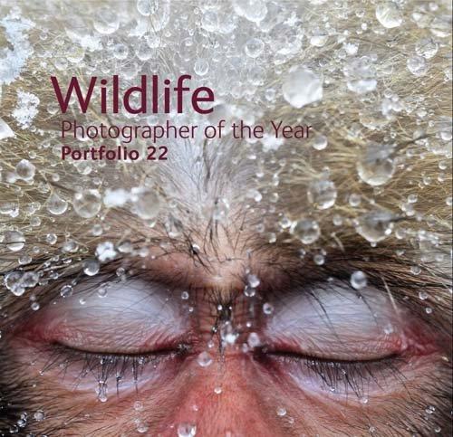 Wildlife Photographer of the Year Portfolio 22: Cox, Rosamund Kidman