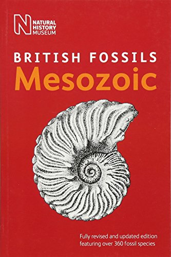 9780565093198: British Mesozoic Fossils (British Fossils)