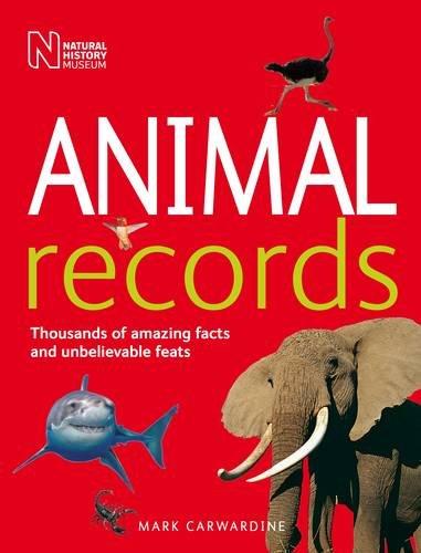 9780565093204: Animal Records