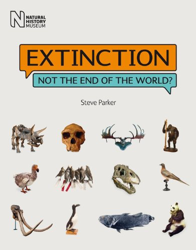 9780565093211: Extinction: Not the End of the World?