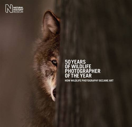 9780565093266: 50 Years of Wildlife Photographer of the Year