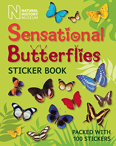9780565093280: Sensational Butterflies Sticker Book