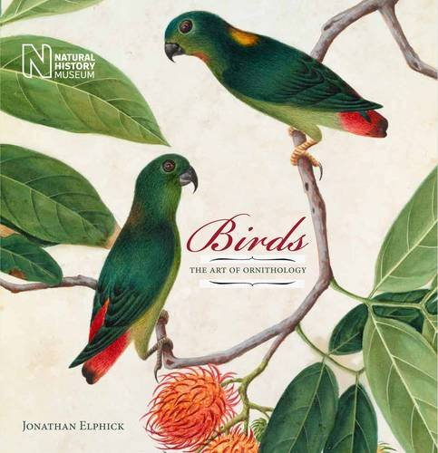 9780565093327: Birds: The Art of Ornithology