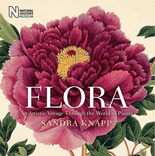 9780565093341: Flora: An Artistic Voyage through the World of Plants