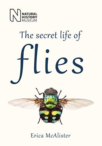 9780565093365: The Secret Life of Flies
