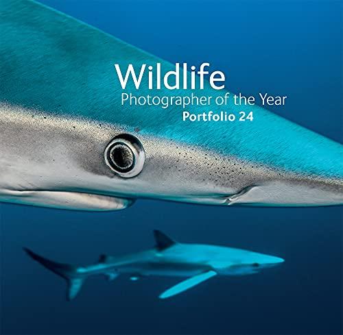 9780565093426: Wildlife Photographer of the Year: Portfolio 24