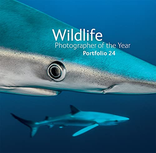 Wildlife Photographer of the Year: Portfolio 24: Kidman Cox, Rosamund