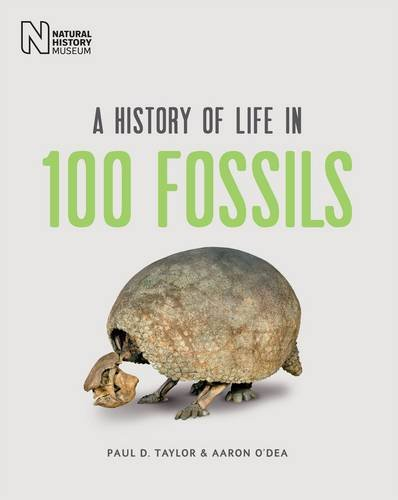 9780565093471: A History of Life in 100 Fossils