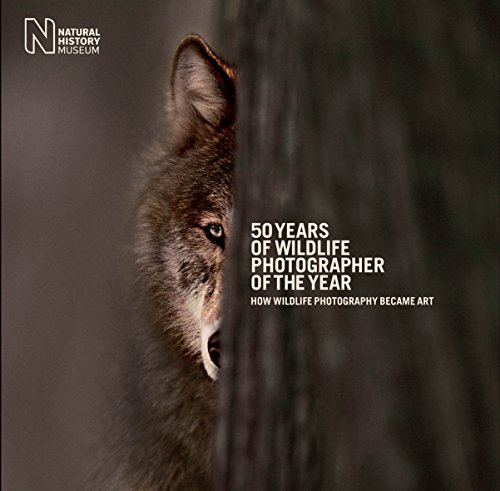 9780565093518: 50 Years of Wildlife Photographer of the Year