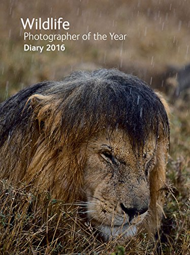 9780565093600: Wildlife Photographer of the Year Desk Diary 2016