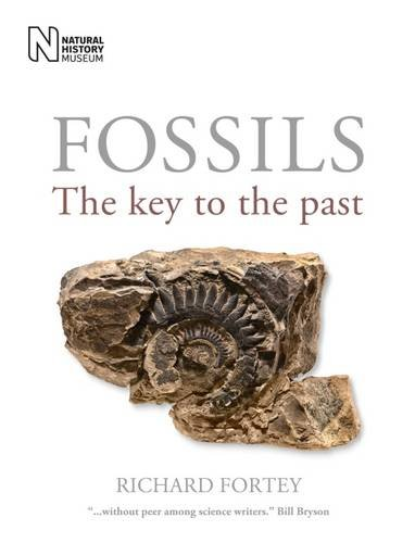 9780565093754: Fossils: The Key to the Past