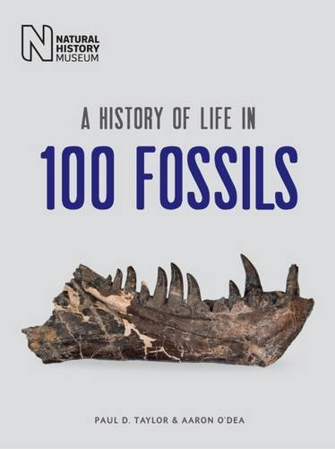 9780565093822: A History of Life in 100 Fossils