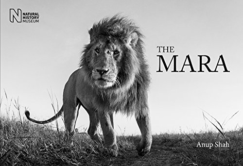 The Mara: Shah, Anup