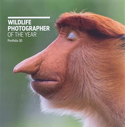 9780565094928: Wildlife Photographer of the Year: Portfolio