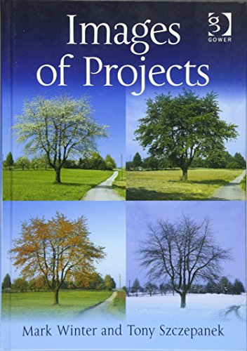 9780566087165: Images of Projects