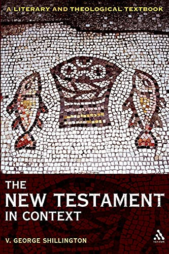 9780567034052: The New Testament in Context: A Literary and Theological Textbook