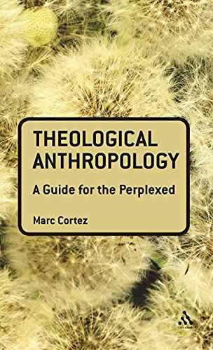 9780567034311: Theological Anthropology: A Guide for the Perplexed (Guides for the Perplexed)