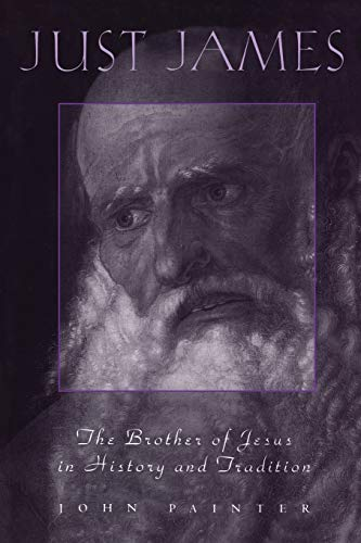 9780567041913: Just James: The Brother of Jesus in History and Tradition (Academic Paperback)