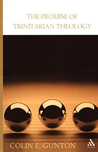 9780567081001: The Promise of Trinitarian Theology