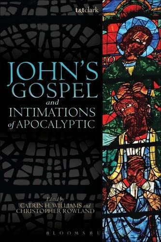 9780567119100: John's Gospel and Intimations of Apocalyptic
