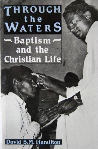 9780567291783: Through the Waters: Baptism and the Christian Life