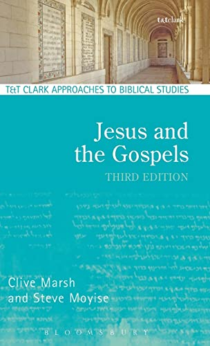 9780567656193: Jesus and the Gospels