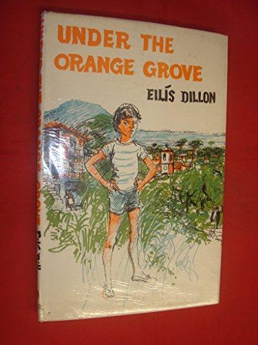 9780571087327: Under the Orange Grove