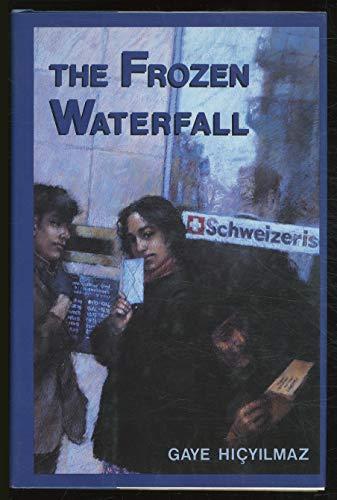 9780571167944: the frozen waterfall