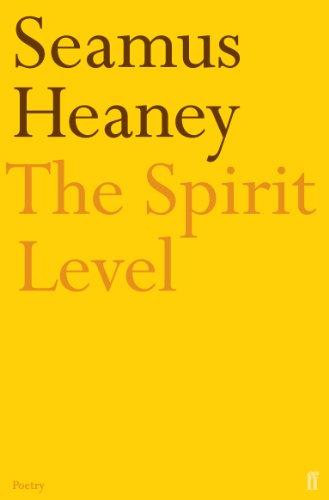 9780571178223: The Spirit Level