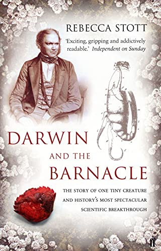 9780571216093: Darwin and the Barnacle
