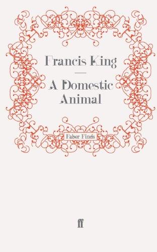 9780571253678: A Domestic Animal