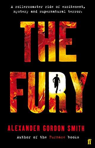 9780571276165: Fury