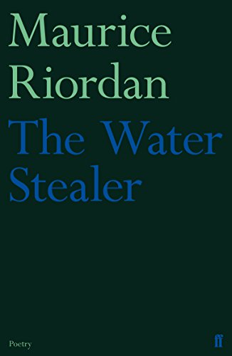 9780571302451: The Water Stealer