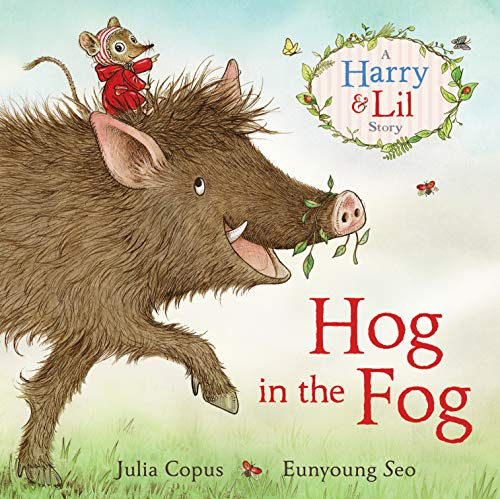 9780571312115: Hog in the Fog: A Harry & Lil Story