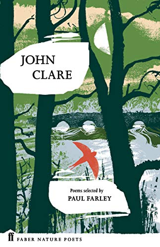 9780571328741: John Clare (Faber Nature Poets)