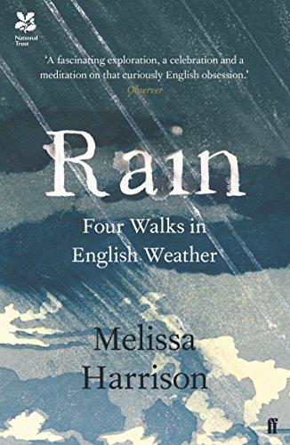 9780571328949: Rain: Four Walks in English Weather