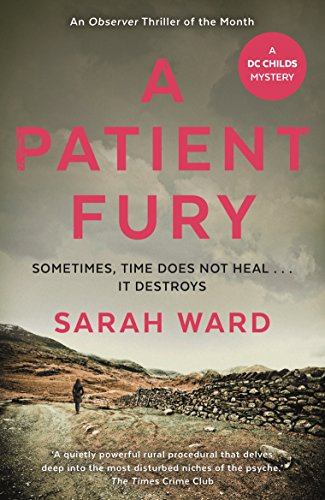 9780571332335: A Patient Fury (DC Childs mystery)