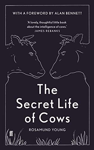 9780571336777: The Secret Life of Cows
