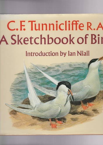 9780575026407: Sketchbook of Birds