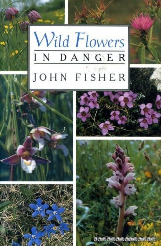 Wild Flowers in Danger