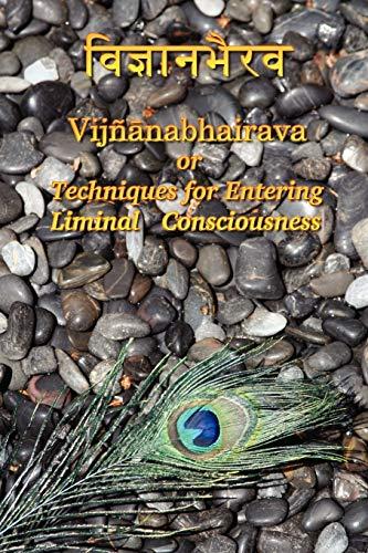 Vijnaanabhairava or Techniques for Entering Liminal Consciousness (Paperback) - Dmitri Semenov