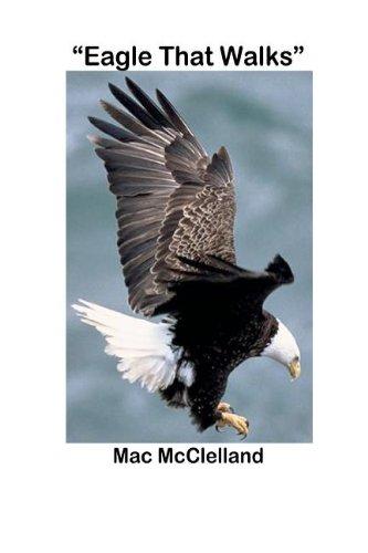 9780578104157: Eagle That Walks
