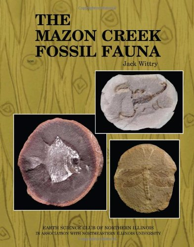 9780578111483: The Mazon Creek Fossil Fauna