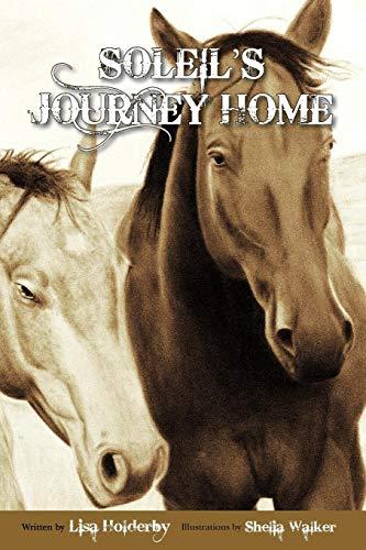 9780578119748: Soleil's Journey Home