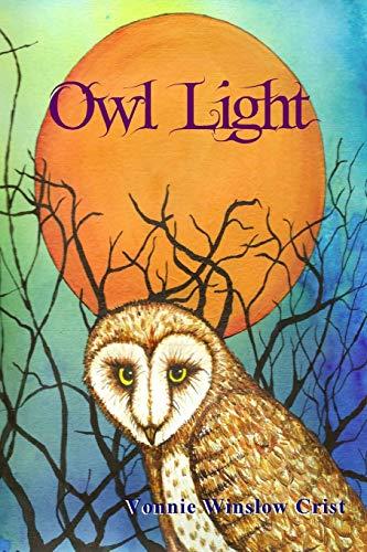 9780578133072: Owl Light