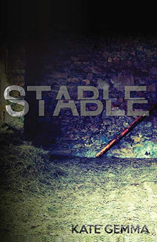 9780578628288: Stable
