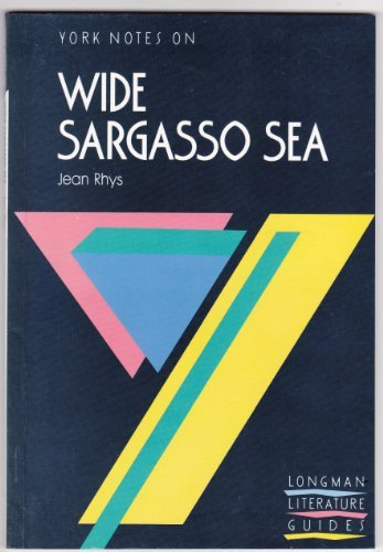 9780582237667: The Wide Sargasso Sea (York Notes)